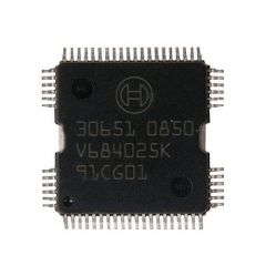 30651 BOSCH Chip for Volk-swagen Lavida Magotan Fuel Injection Module