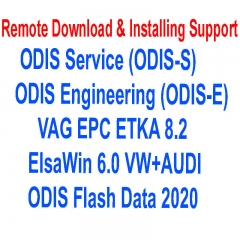 Remote Installing Service Latest ODIS Service / ODIS Engineering / ETKA 8.2 ElsaWin6 VAG Car Diagnostic Repair Software Programs